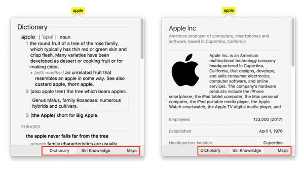 Look up info apple